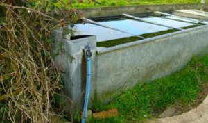 Trace heating for water trough